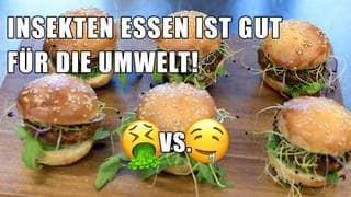 Burger aus Mehlwürmern (Foto: dpa/picture-alliance)