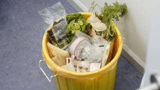 Lebensmittelverschwendung: Lebensmittel im Müll (Foto: imago/phototek)