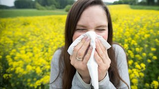 Pollen sind lästig – junge Frau mit Allergie putzt sich die Nase (Foto: dpa Bildfunk, Picture Alliance)