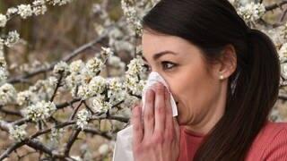 Allergie oder Corona (Foto: dpa Bildfunk, Picture Alliance)