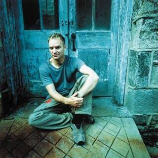 Sting (Foto: Universal)