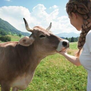 Mädchen streichelt Kuh (Foto: © Allgäu GmbH, Marc Oeder)
