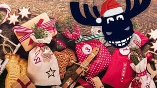 Elch mit weihnachtlicher Mütze, Spekulatius, Zimtsterne, Zuckerstangen und Adventskalendersäckchen (Foto: SWR3, Adobe Stock)